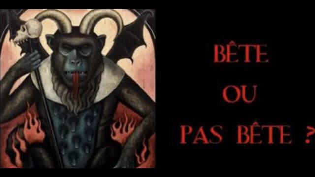 Bête ou pas Bête – troisième partie