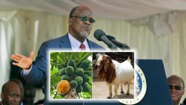 Präsident Tansania