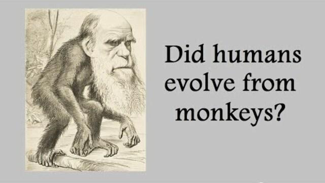 Destroying Evolution and Justifying Intelligent Design Debate (Join Link in Desc)