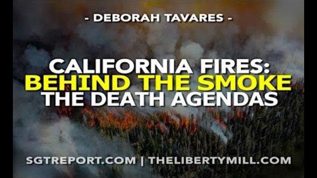 Image result for Fires – Behind the Smoke: The Death Agendas