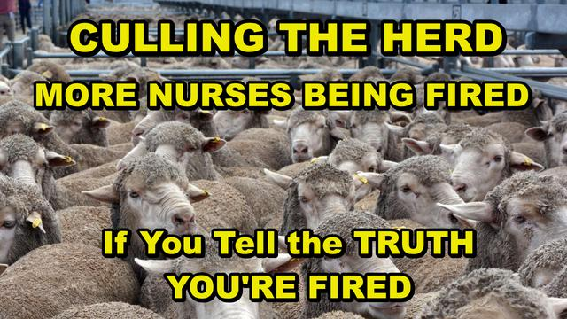 "Charlie Ward: More Hospital Whistleblowers! - ""If You Won't Lie About The Vaccine, Then You're Fired"" - It's Murderer! - Must Video"
